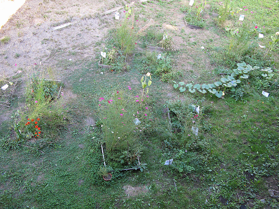 jardin-ecole-zola