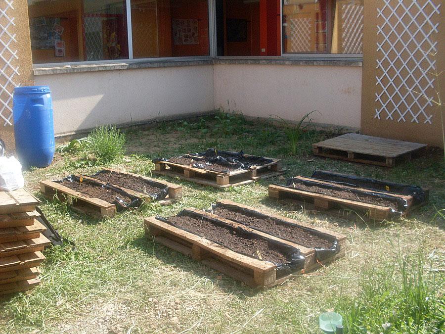 jardinage-CE2-jardin-ecole