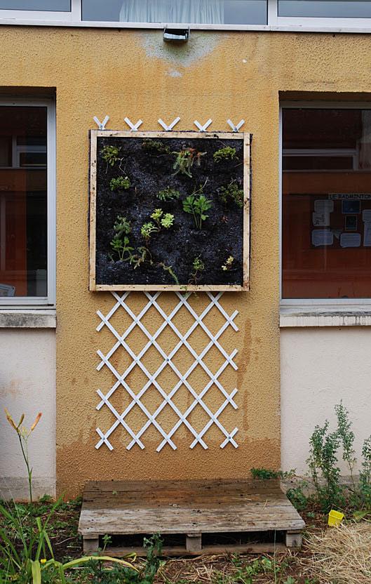 mur-vegetal-ecole-tricot-caue-12