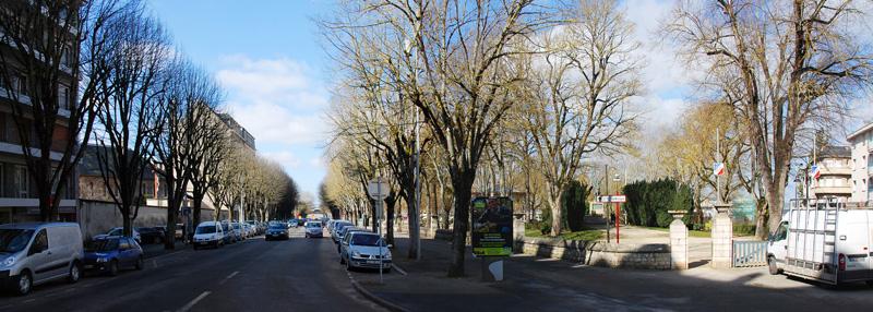 arbres-avenue-V-hugo