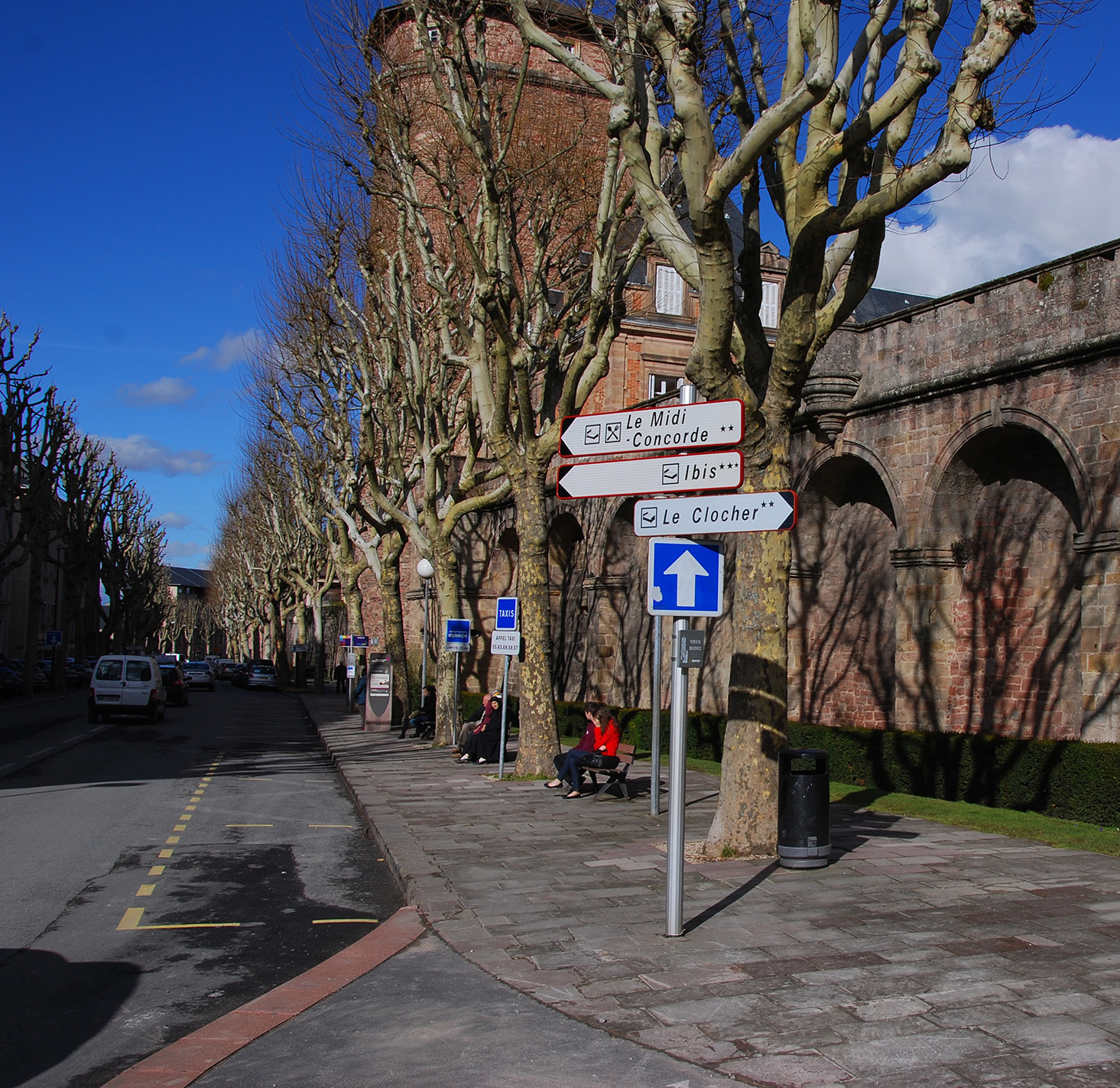 platanes-tour-de-ville