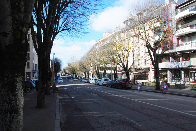 tilleuls-avenue-v-hugo